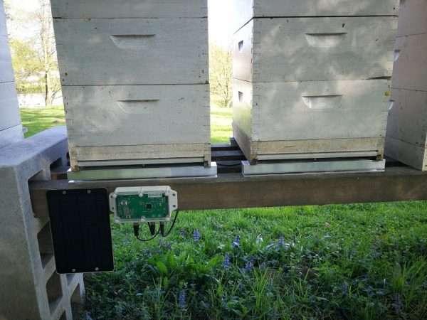 Čebelarska tehtnica